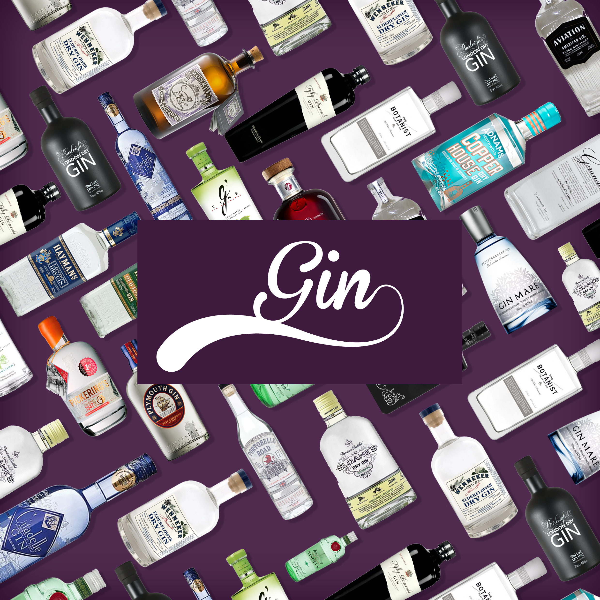 Our Gin Portfolio Image